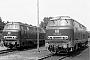 "Krupp 4047 - DB ""216 004-2"" 28.07.1978 - Gelsenkirchen-Bismarck, BahnbetriebswerkMichael Hafenrichter"